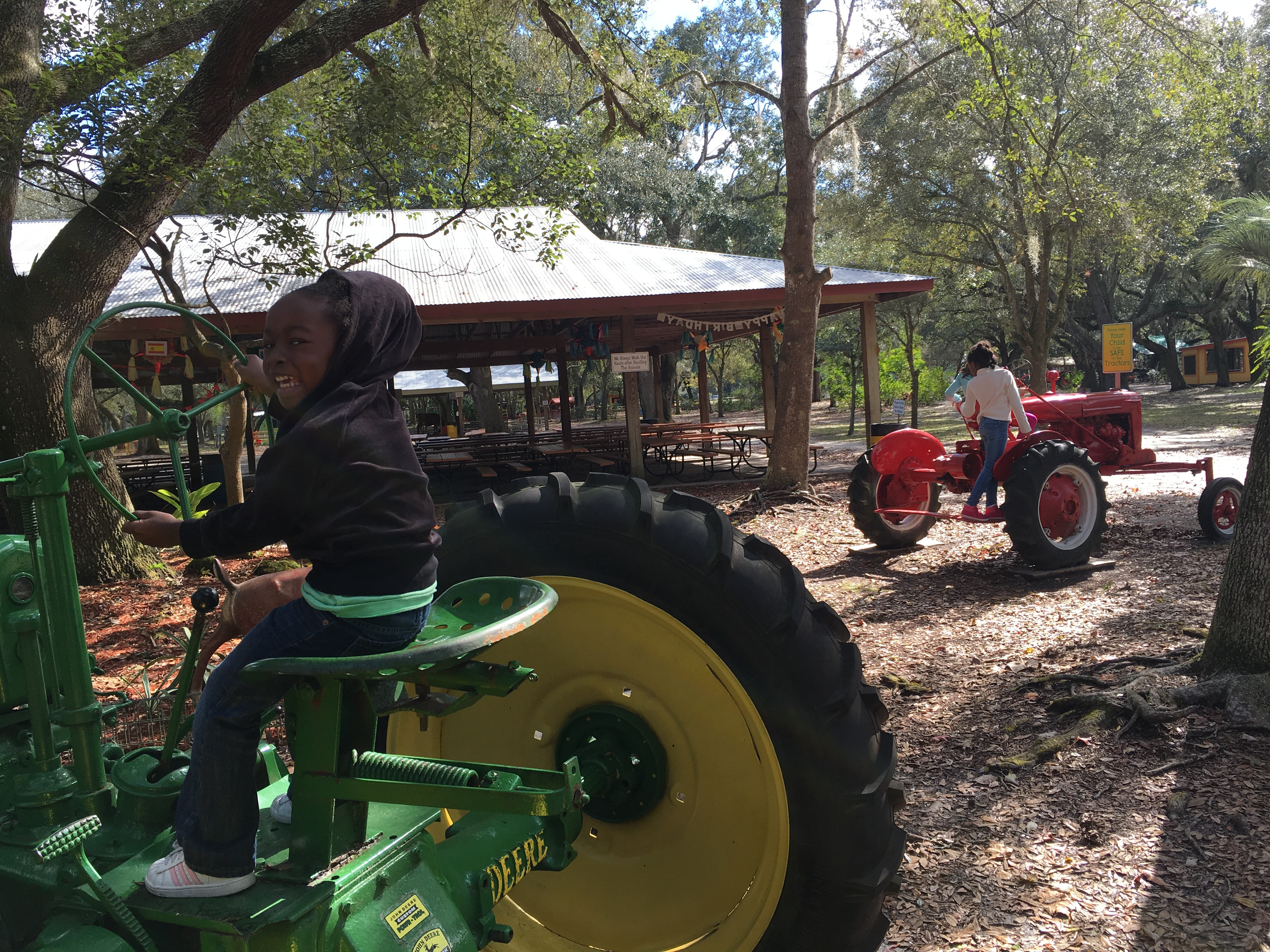 I love that the farm had a dozen of these tractors all over the grounds, just for climbing and playing on.