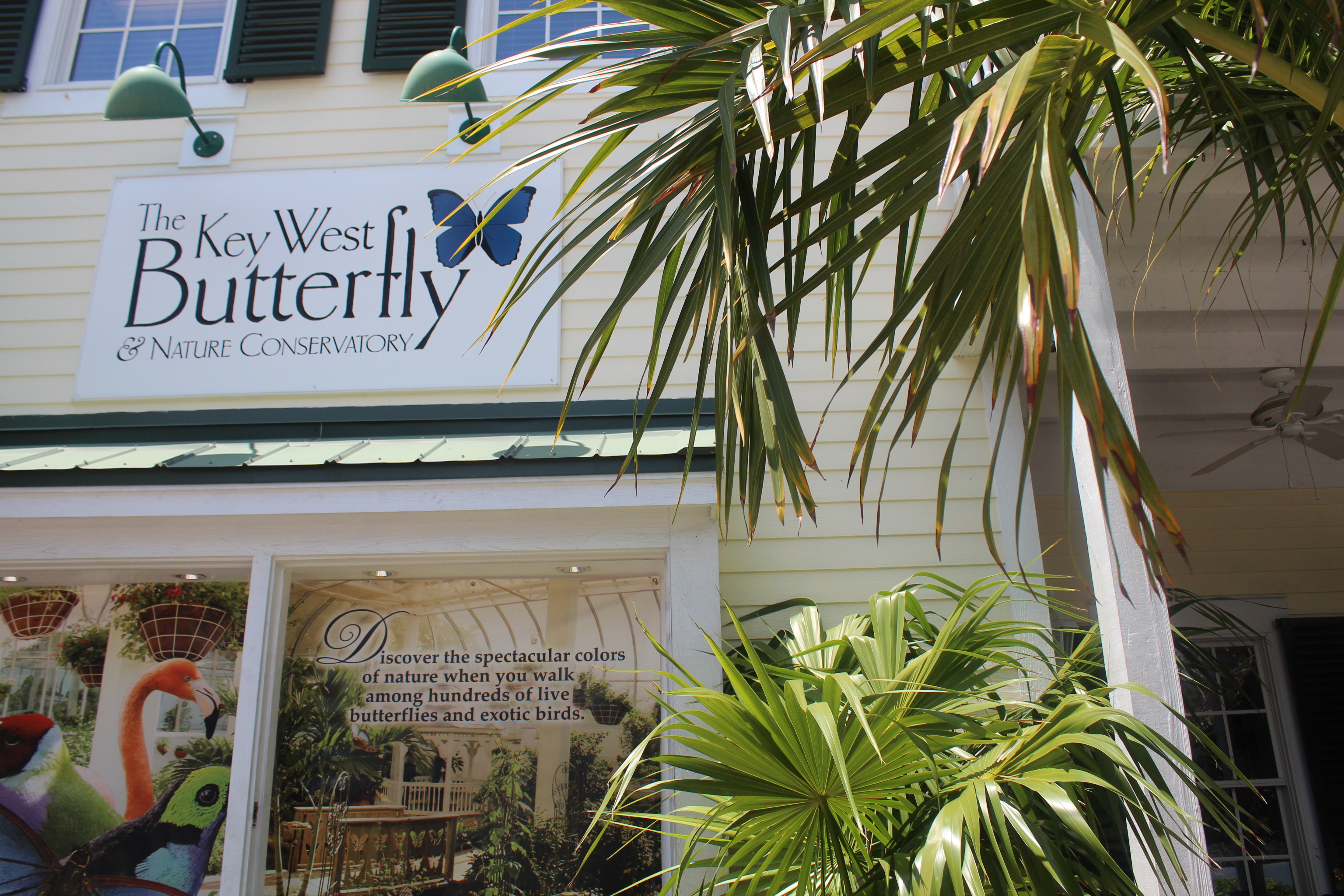 kw-butterfly-signage-2