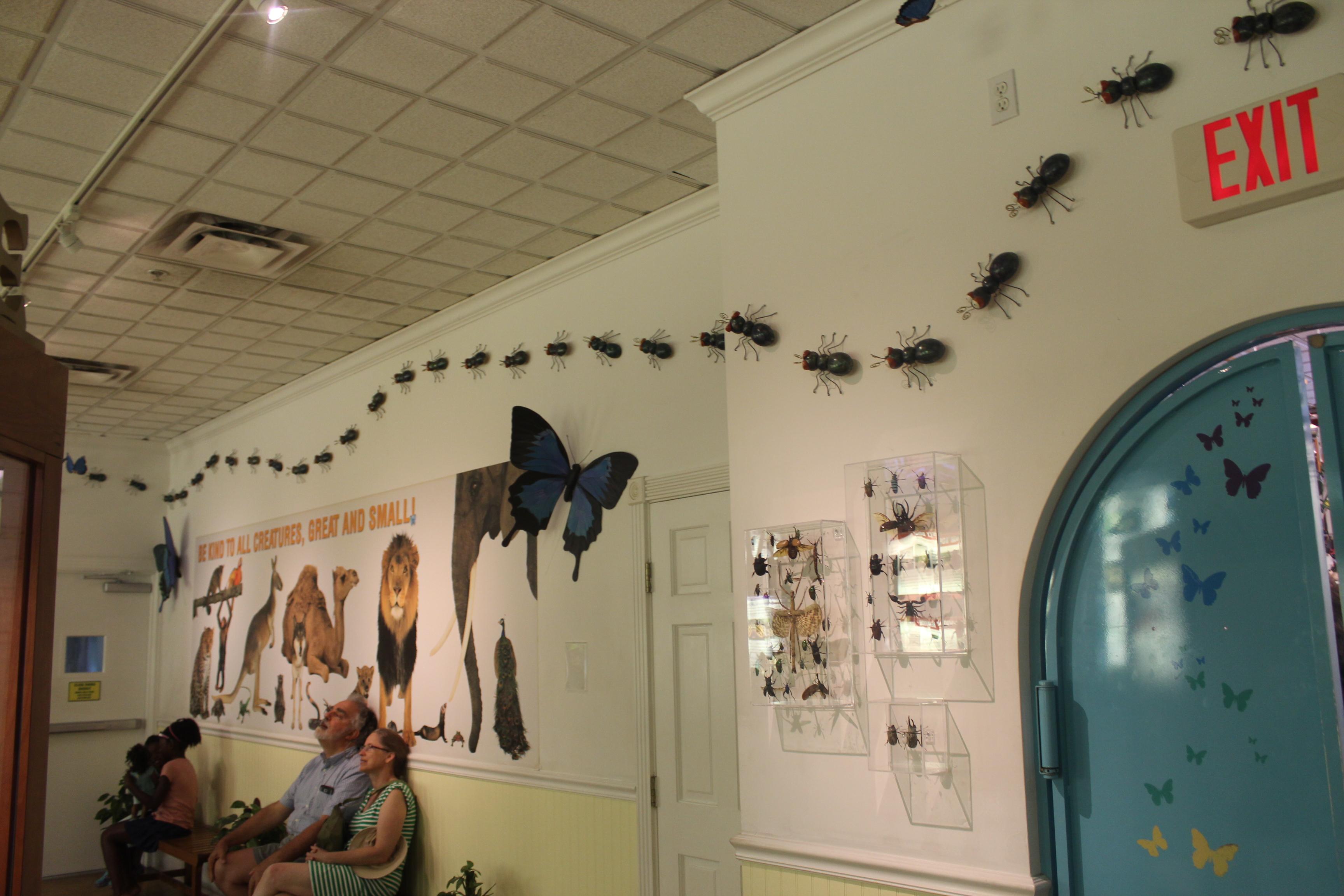 kw-butterfly-wall