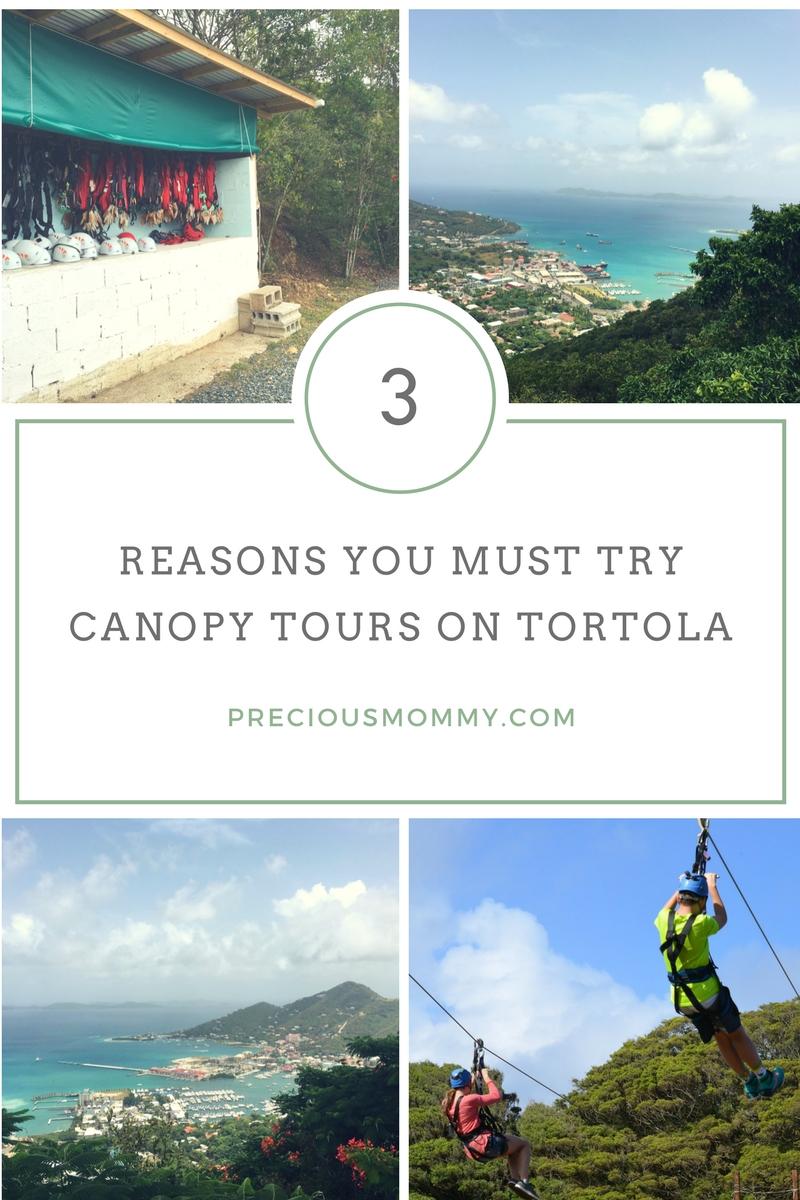 canopy tours tortola zipline