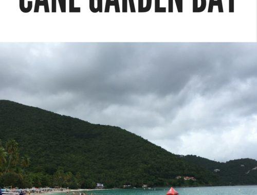 tortola cane garden bay