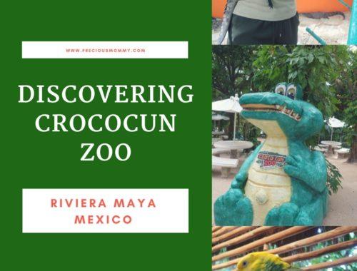 crococun zoo mexico cancun
